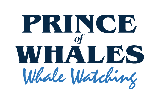 Prince of Whales logo refresh